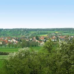 Unterreichenbach 5 hotels