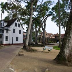Парамарибо 184 отеля