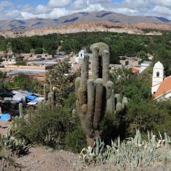 La Quiaca 12 hotels