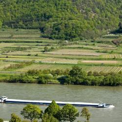 Mautern an der Donau 12 Hotels