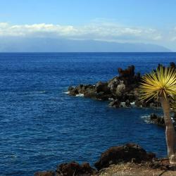 La Playa Calera 6 hotelů