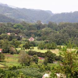 Santo da Serra 32 hotéis
