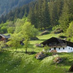 Hart bei Graz 3 hoteller