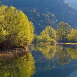Rijeka Crnojevića 23 hotelov