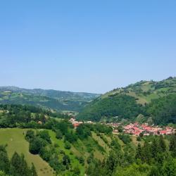 Poiana Mărului 4 pet-friendly hotels