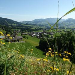 Schwarzenberg im Bregenzerwald 30 Hotels
