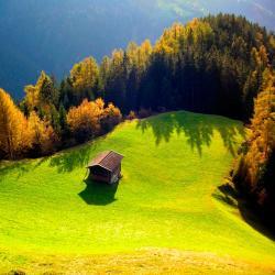 Wald am Arlberg 23 hotels