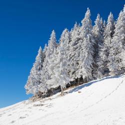 La Vue des Alpes 3 hotels