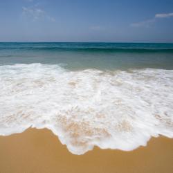 Карнон-Плаж 51 готель
