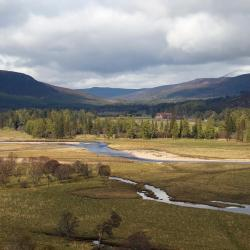 Grantown on Spey 49 hotels