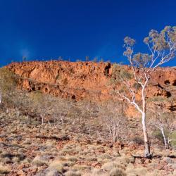 Flinders Ranges 5 ξενοδοχεία