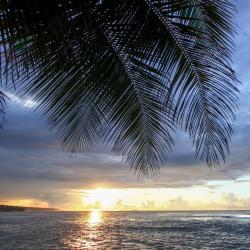 Ceiba 9 hotels