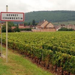 Gevrey-Chambertin 5 hôtels