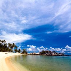 Tanjungpandan 64 hotels