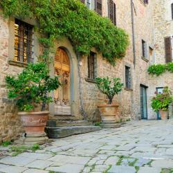Castellina in Chianti 157 hotel