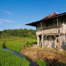 Bandar Lampung 76 hotel