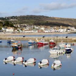 Lyme Regis 140 hotels