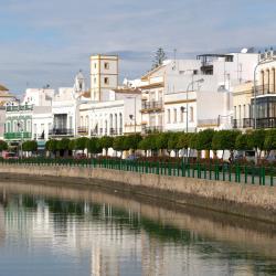 Ayamonte 173 hoteles