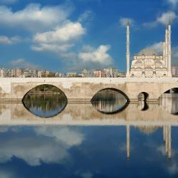 Adana 6 dýravæn hótel