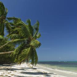 Grand'Anse Praslin 39 hotellia