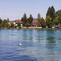 Thun 7 self catering properties