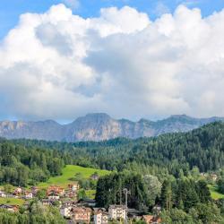 Fiera di Primiero 74 hotelů
