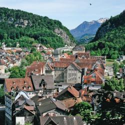 Feldkirch 29 hotels