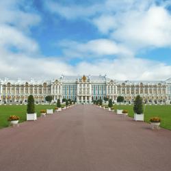 Пушкин 174 отеля