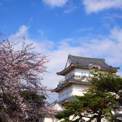 Aizuwakamatsu 25 hotels