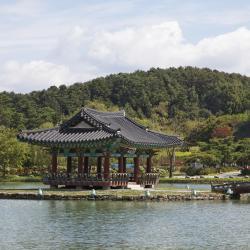 Buyeo 5 hotels