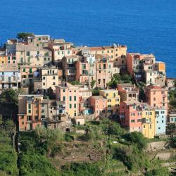 Corniglia 58 hotels