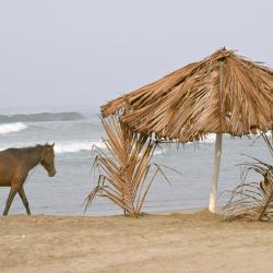 Playa Azul 7 hotels