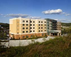 Courtyard by Marriott Pittsburgh Washington Meadow Lands