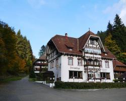 Waldgasthof Steinasäge
