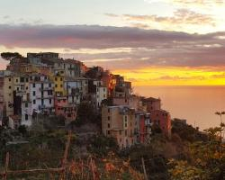 Terre Apartment