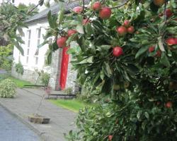 The School House Castledermot