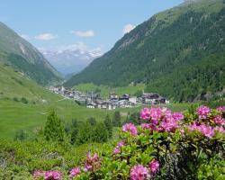 Natur-&Alpinhotel Post