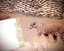 Zebra Hostel