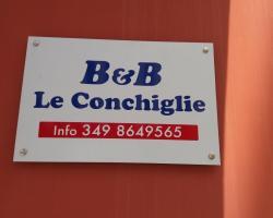 B & B Conchiglie