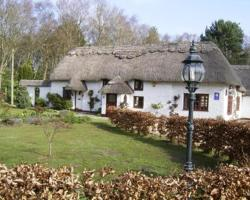 Thatch Cottage Guest House