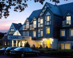Hotel Albus