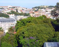 Overlooking Botanic Garden And Castle