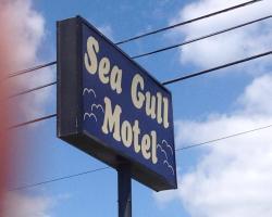 Seagull Motel