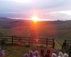 Immersi nella campagna Toscana