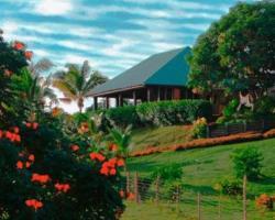 Palmlea Farms Lodge & Bures - Villas