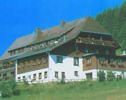 Schwarzwaldgasthof Grüner Baum