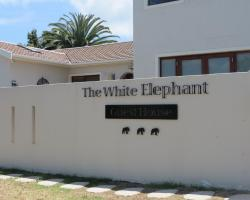 The White Elephant Guesthouse