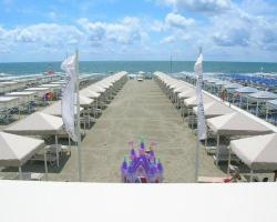 Danio beach house