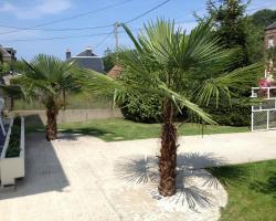 Gîte des 2 palmiers