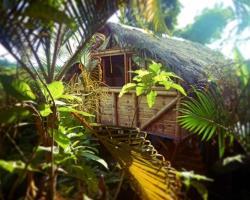 La Jungla Tropical Bungalows
